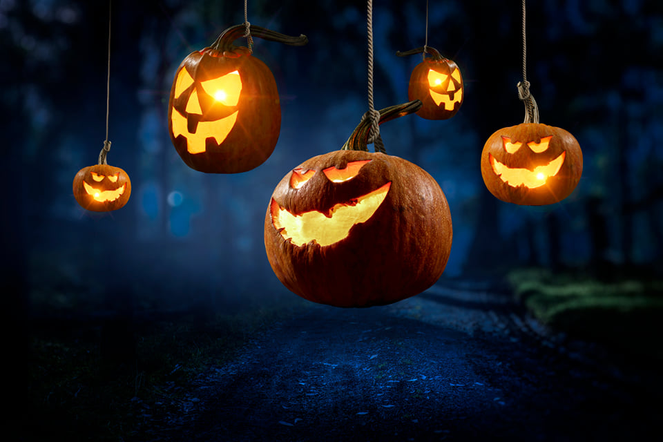 Get Spooky this Halloween- Perth Halloween Events!